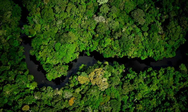 Temer acaba com reserva, entre o Pará e o Amapá, onde ficam nove áreas protegidas