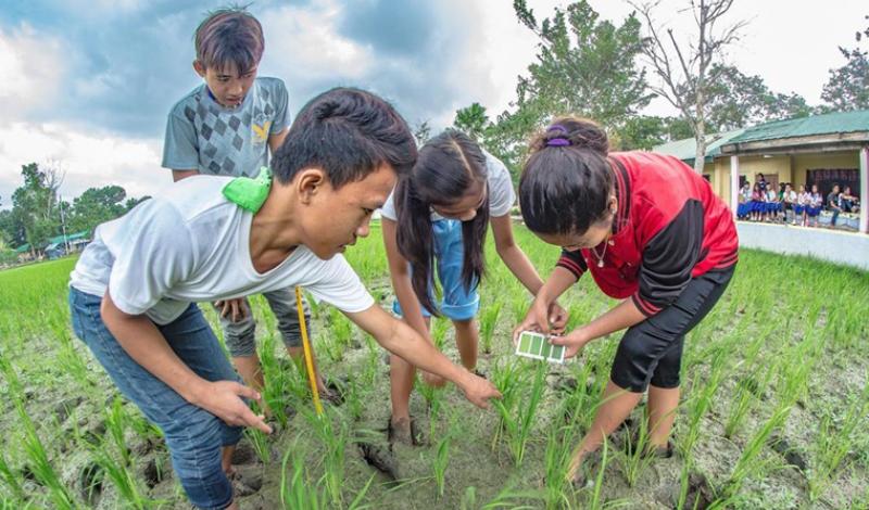 Abertas inscrições para programa gratuito de liderança em questões ambientais nos EUA
