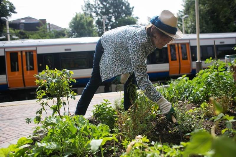 horta comunitária na estação de trem de Londres