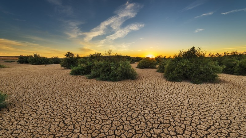 15 mil cientistas assinam carta que alerta sobre a situação do planeta