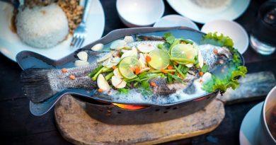 Peixes comprovadamente sustentáveis estarão no cardápio de restaurantes do Rio, Bahia e Pará neste verão