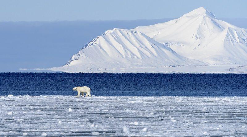 Aquecimento global pode ser irreversível, adverte cientista líder de expedição enviada ao Polo Norte
