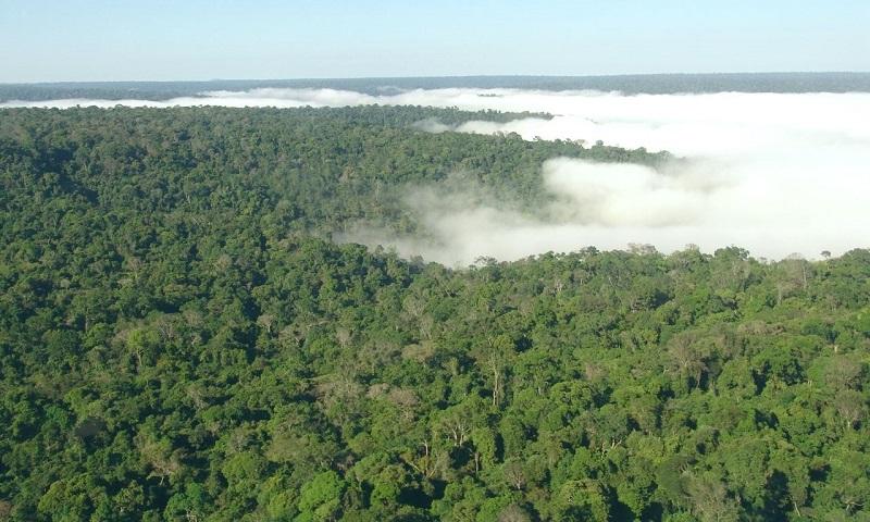 Orçamento para o Meio Ambiente no Brasil em 2018 é o menor dos últimos cinco anos
