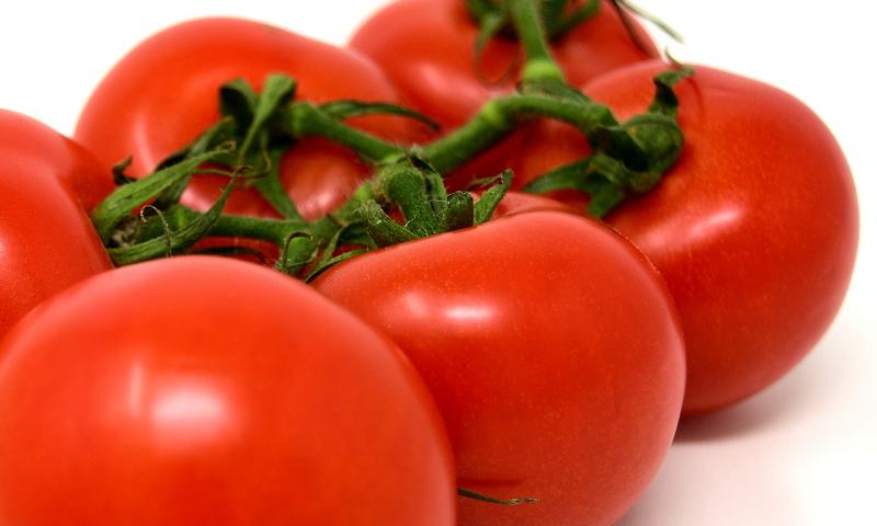 receita de marinada de tomate