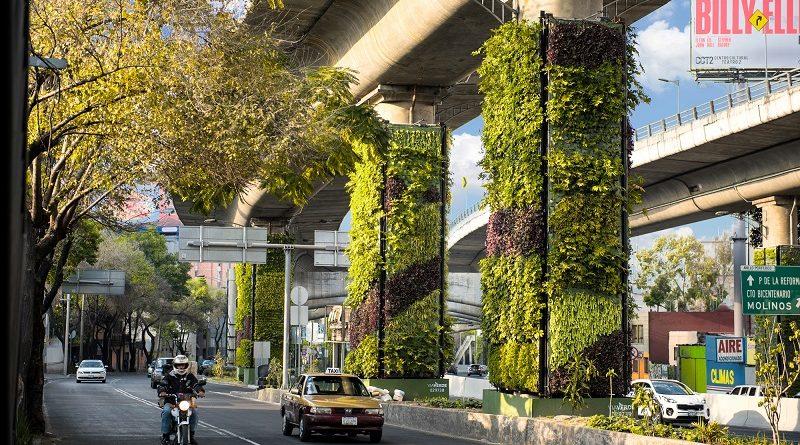 México combate a poluição com a instalação de jardins verticais