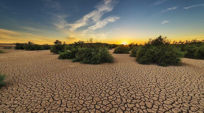 Aquecimento global: a hora de agir é AGORA!
