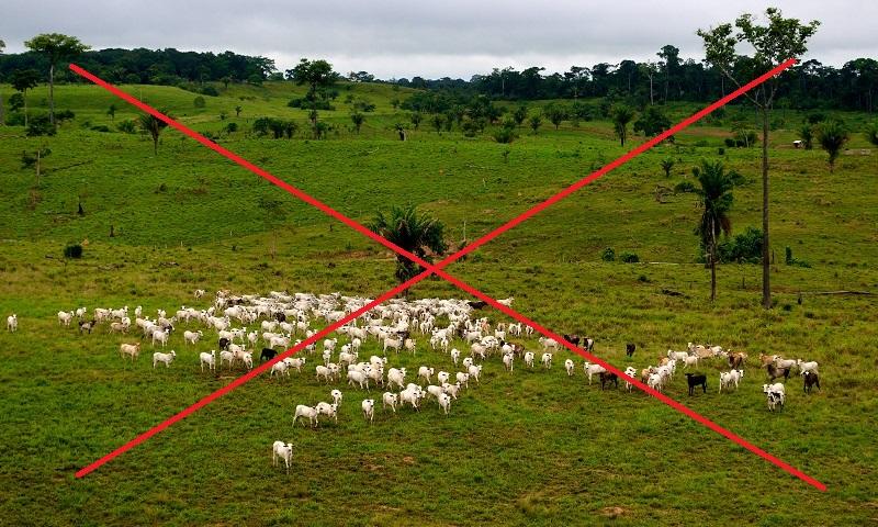 Diga NÃO à fusão dos ministérios do Meio Ambiente e da Agricultura! Assine já a petição!