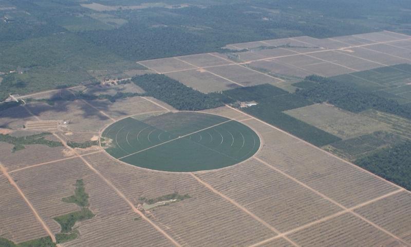 Desmatamento na Amazônia em setembro é 84% maior do que mesmo período do ano passado