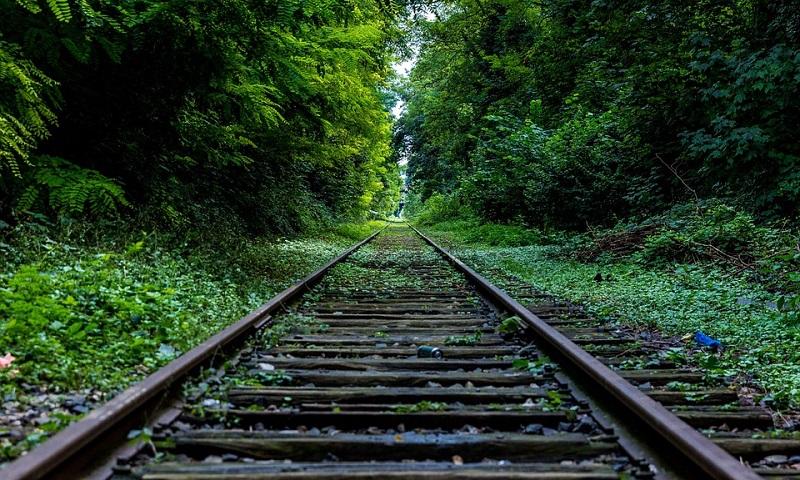 Ministro do Meio Ambiente diz que pode rever Unidades de Conservação e liberar ferrovias nessas áreas protegidas
