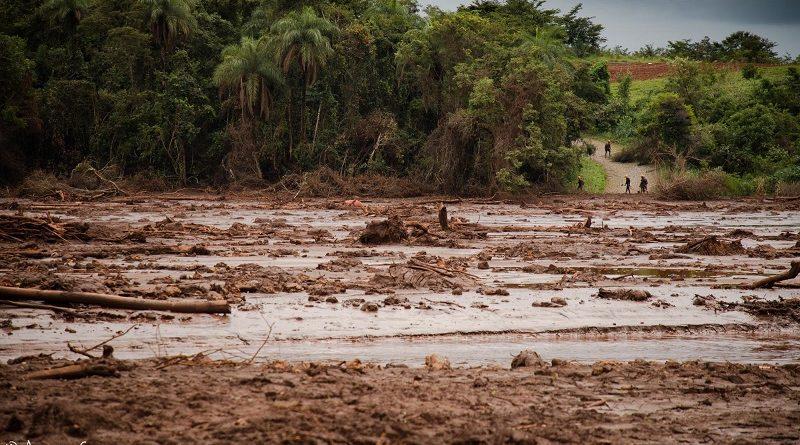 Contaminação do rio Paraopeba já chega a mais de 300 km e atinge água de 16 municípios