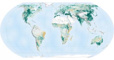 O planeta está mais verde graças à Índia e à China