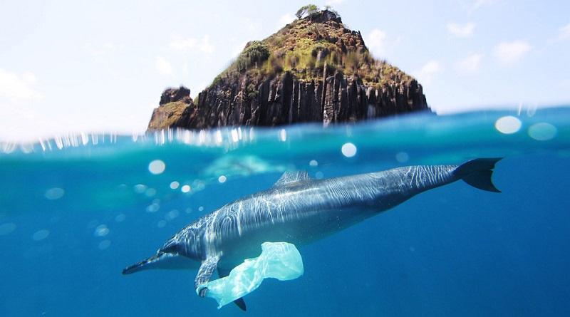 127 países do mundo já tem leis com restrições ao plástico. O Brasil não é um deles