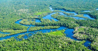 Ministério do Meio Ambiente quer mudar regras do Fundo Amazônia e usar dinheiro para desapropriar terras