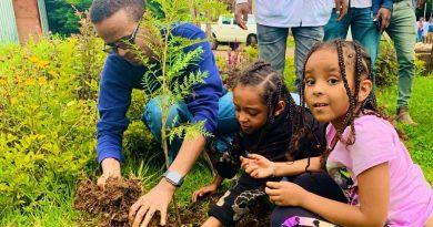 Etiópia planta mais de 350 milhões de árvores em apenas um dia