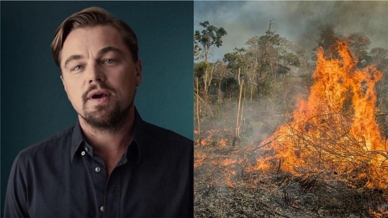 Organização de Leonardo DiCaprio cria Fundo para a Amazônia com investimento inicial de US$ 5 milhões