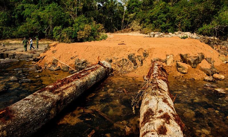 Amazônia tem novo recorde em alertas de desmatamento em junho e aumento de 25% no semestre