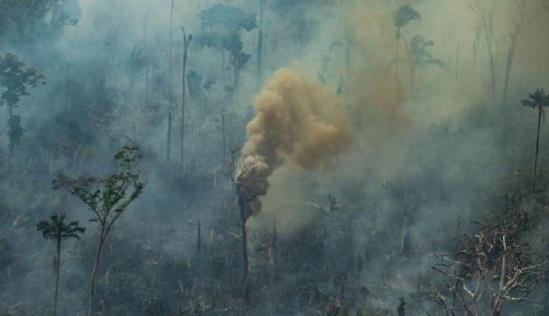 Amazônia completa 3º mês seguido de desmatamento recorde