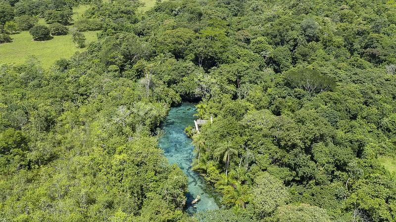 Áreas protegidas: o mais importante instrumento já criado para conservar a natureza