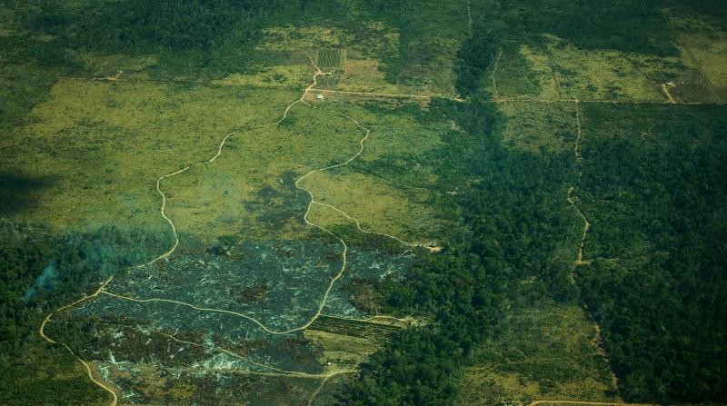 Amazônia tem aumento de mais de 200% no desmatamento em outubro, apontam alertas do Imazon