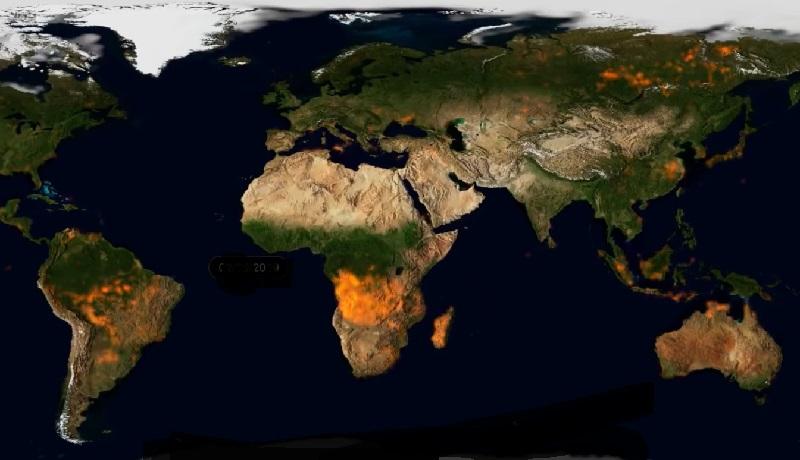 Vídeo impressionante mostra dimensão do impacto dos incêndios no planeta em 2019