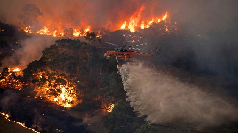 Celebridades e internautas doam quase 30 milhões de dólares para ajudar combate aos incêndios na Austrália