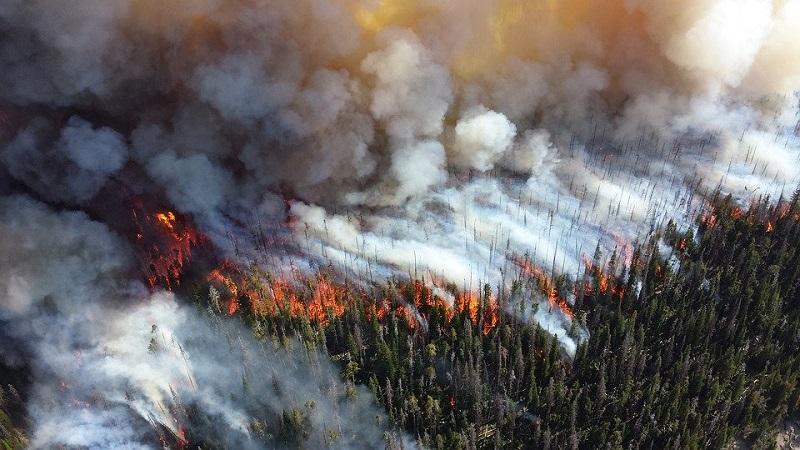 Desastres climáticos estão entre as cinco maiores preocupações para a próxima década em relatório do Fórum Econômico Mundial