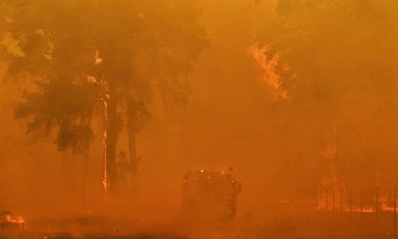 Incêndios na Austrália: tragédia incontrolável