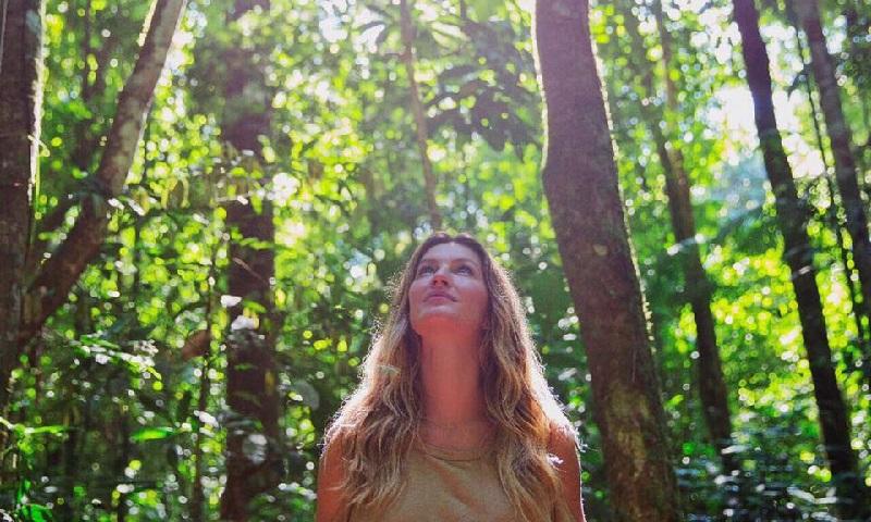 Gisele Bündchen quer plantar 40 mil árvores para celebrar seus 40 anos
