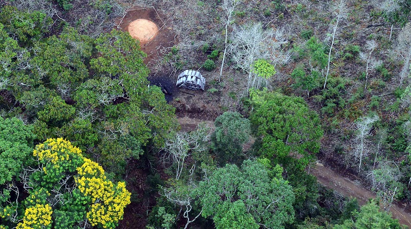 Para agradar ruralistas, Ricardo Salles muda regras de anistia a multas por desmatamento ilegal na Mata Atlântica