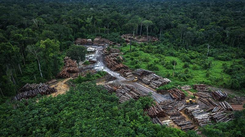 Amazônia tem aumento de 64% em abril, indicam alertas do Inpe
