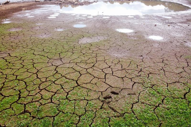 Em meio à pandemia, estiagem prolongada faz Paraná decretar emergência hídrica