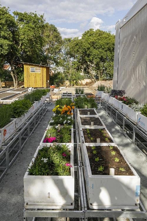 Curitiba ganhará Fazenda Urbana, um centro de referência para o cultivo de alimentos orgânicos e energias sustentáveis