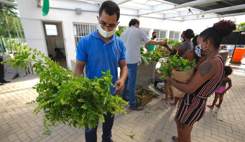 Programa Hortas Cariocas doa toneladas de alimentos para famílias de baixa renda em dificuldades devido à crise do coronavírus