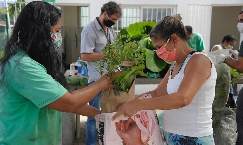 Hortas Cariocas doa toneladas de alimentos para famílias de baixa renda em dificuldades devido à crise do coronavírus