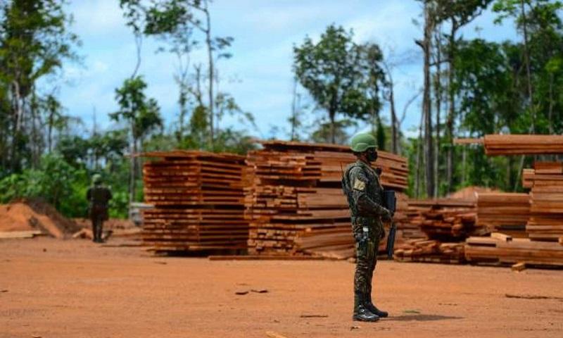 Custo de dois meses da operação das Forças Armadas na Amazônia é quase o dobro do orçamento anual do Ibama para fiscalização