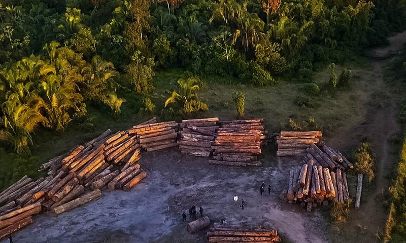 Empresários cobram ações do governo contra o desmatamento e alertam sobre péssima imagem do Brasil no exterior