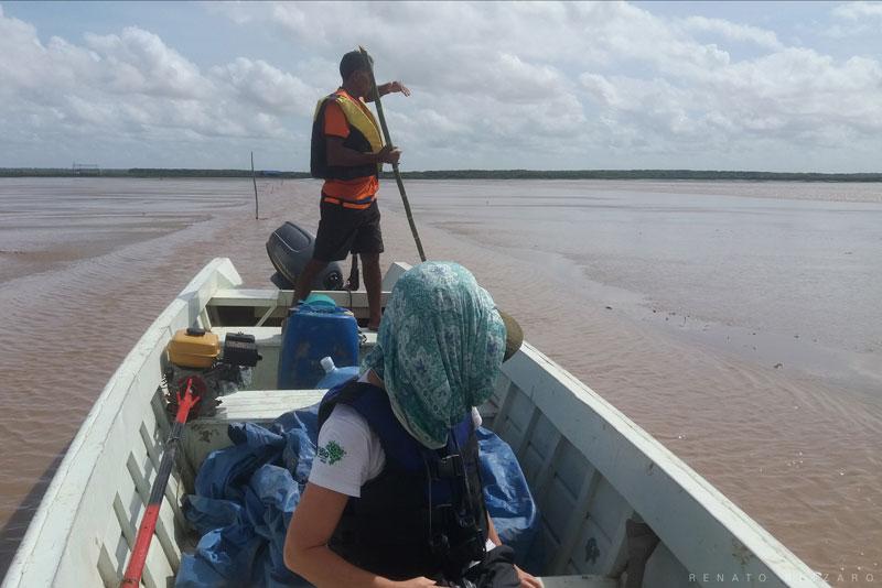 Em busca dos raros e ameaçados flamingos no Lago Bonome, no extremo norte do Brasil