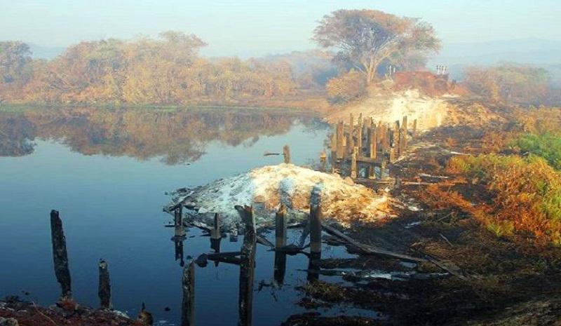 Fogo dá breve trégua, mas queimadas no Pantanal crescem mais de 200% em relação a 2019