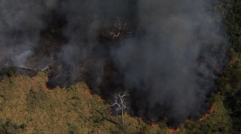 Brasil perdeu área de vegetação nativa equivalente a 10% do território nacional nas últimas três décadas