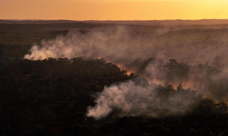 Julho tem aumento de quase 30% no número de queimadas e num único dia recorde dos últimos 15 anos