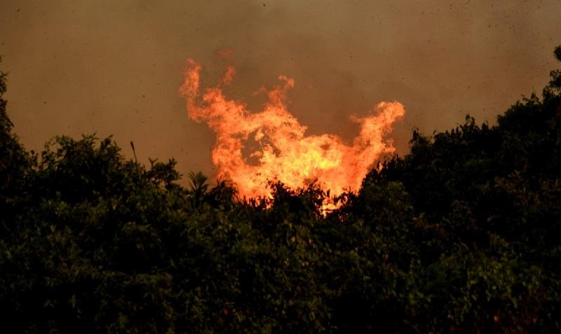 Pantanal enfrenta terceira semana seguida de incêndios: maior reserva particular natural do país é atingida