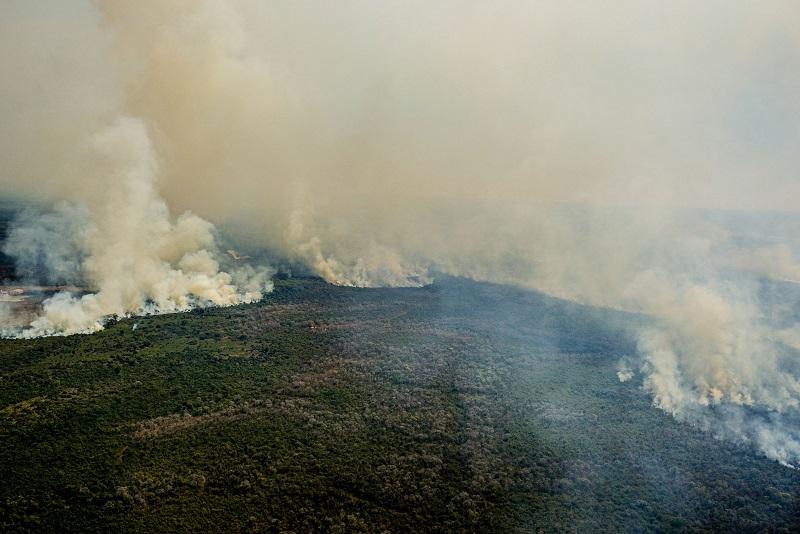 Primeiros dias de agosto já superam número de queimadas de julho inteiro no Pantanal do Mato Grosso