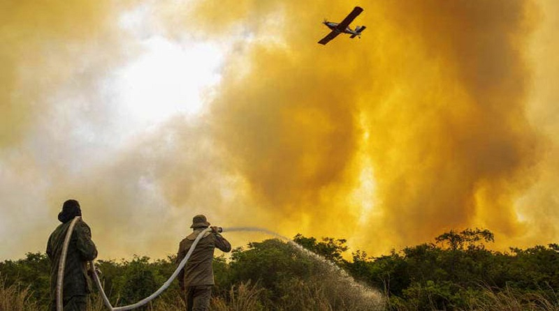 Número de queimadas nos primeiros dias de agosto já supera aquelas de julho inteiro no Pantanal do Mato Grosso