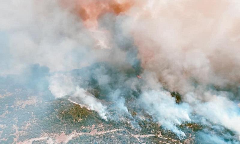 """""""Se você não acredita em mudança climática, venha para a Califórnia"""", diz governo do estado americano sobre incêndios devastadores"""