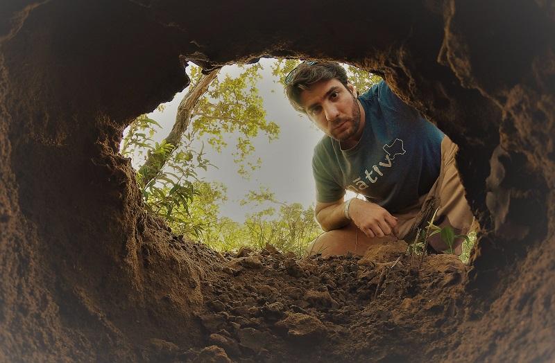 Projeto Tatu-Canastra: dez anos de pesquisa trazem maior conhecimento sobre espécie 'invisível' dos biomas brasileiros