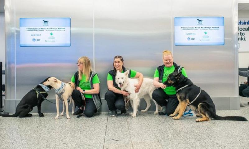 Aeroporto da Finlândia começa a usar cães para detectar passageiros contaminados com o coronavírus