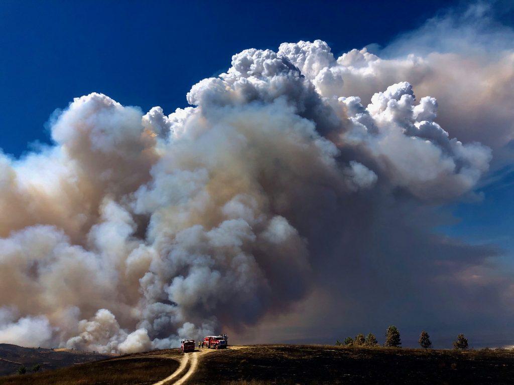 Incêndios na Califórnia: quase 900 mil km² de vegetação queimados e temperatura recorde de 49°C graus