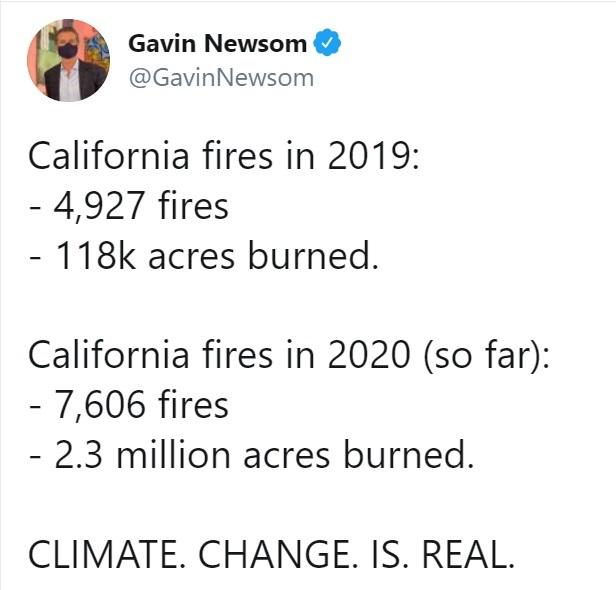 Incêndios na Califórnia: mais de 800 mil hectares destruídos e temperatura recorde de 49°C graus