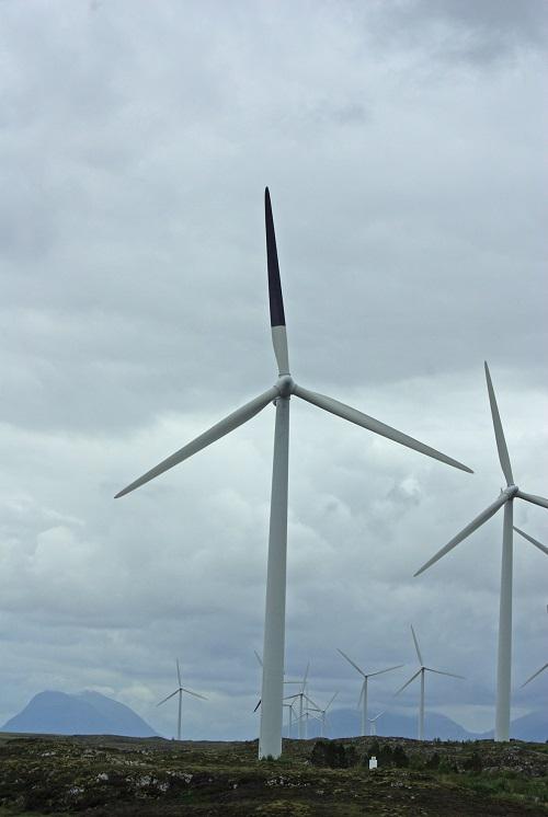 Pá pintada de preto em turbina eólica reduz em 70% morte acidental de pássaros