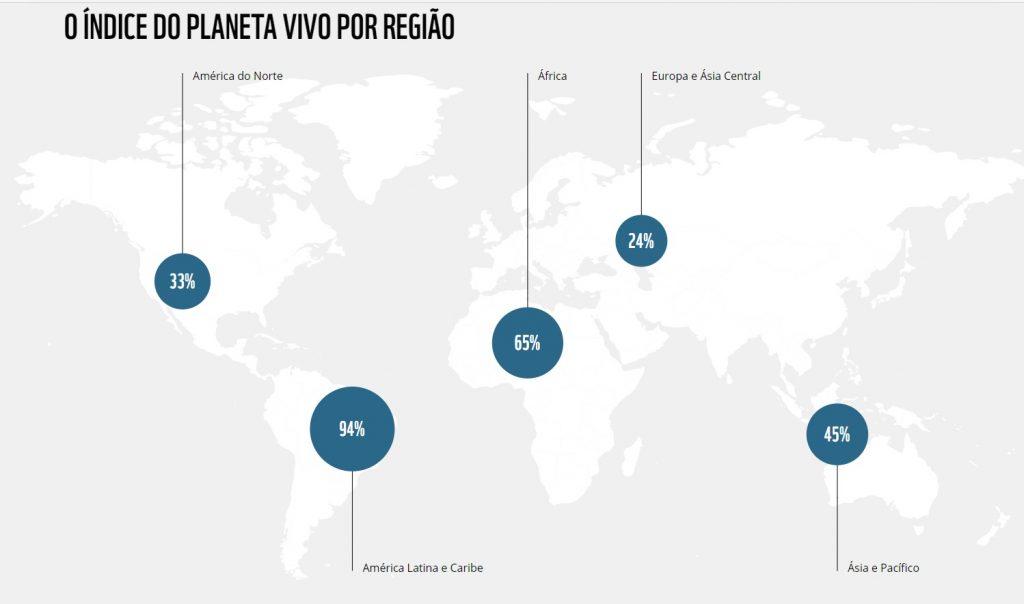 América Latina e Caribe apresentam maior redução global de mamíferos, aves, anfíbios, répteis e peixes, alerta relatório do WWF